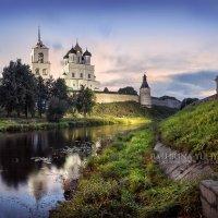 Заросшие берега :: Юлия Батурина