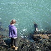 Девушка с собакой у моря :: Natalia Harries