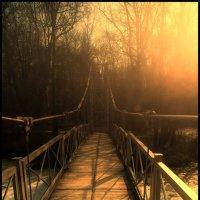 Солнечный мост :: Олег Потехин