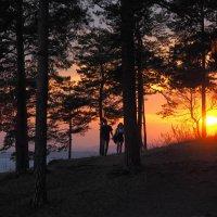 Прогулки на закате дня. :: Сергей Адигамов