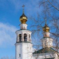 Весна :: Наталья Шкаева