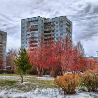 Кемерово, октябрь :: Edward Metlinov
