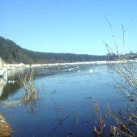 весенняя панорама реки Сухона :: Р о м a н