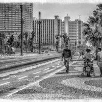 Прогуливаясь по набережной-5 :: Gene Brumer