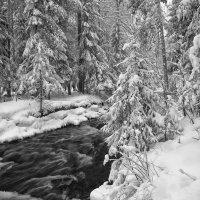 Возвращение зимы :: vladimir Bormotov