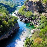 Река Тара :: Николай П