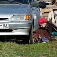 автоледи... :: александр дмитриев