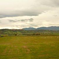 Италия из окна автобуса :: Galina Belugina