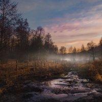 Спустился туман :: Наталья Золотарева