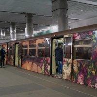 Цветочный поезд :: Наталья Лакомова
