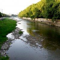 Река Сочи :: Светлана