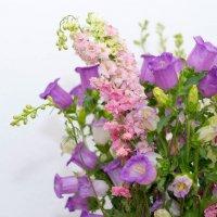 Лютики-цветочки :: David Rinenberg