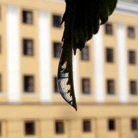 4. Фотография с отражением :: Асылбек Айманов