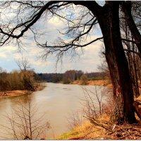 Мутные воды апрельской реки :: Вячеслав Минаев