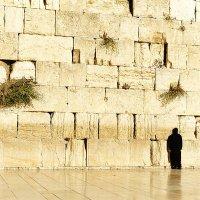 Стена плача. Иерусалим. :: Александр Амеличкин