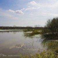 озеро :: юрий мотырев