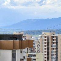 Только крышы и окна :: Валерий Дворников