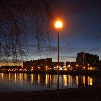 Воспоминание о приятном вечере :: Андрей Лукьянов