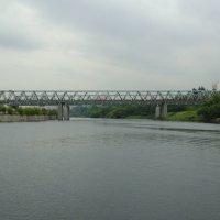 Мост на Москве-реке :: Дмитрий Никитин