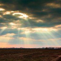 Солнце на небе проснулось, лучиками улыбнулось :: Николай Хондогий