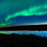 Ночное волшебство. :: Юрий Харченко