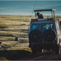 Один на один...с природой! Танзания! :: Александр Вивчарик