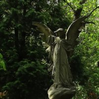 Ангел смерти... :: Владимир Бровко