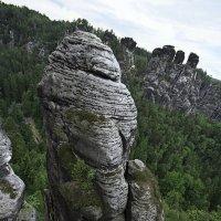 В заповеднике Бастай. Германия :: Ирина Лепнёва