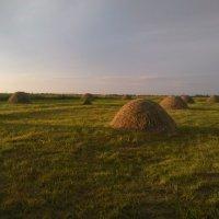 Летом в деревне :: Галина Бобкина