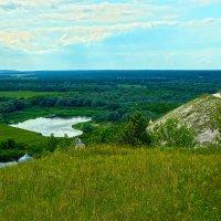 Ветер гладит травы, росами луга напоены. Зелены и веселы дубравы, далеко изгибы рек видны. :: Elena Izotova