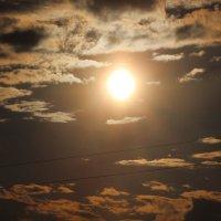 Солнце в Петербурге :: Валерия Лидерман