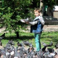 Весна, мальчик и голуби :: Нина Бутко