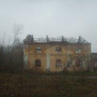 В Глебково городище :: Tarka