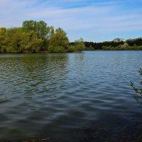 Озеро весной :: Alexander Andronik