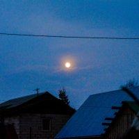 жёлтая луна :: Света Кондрашова