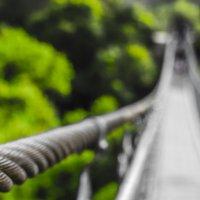 Мост :: Eddy Eduardo