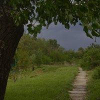 Перед дождем. :: Береславская Елена