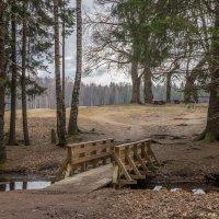 Мосток на островок. :: Наталья Иванова