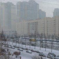 Прощальный снегопад февраля :: Владимир Филимонов