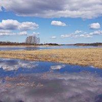 Здесь облака купаются в реке. :: Ирина Нафаня