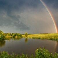 После дождя :: anatoly Gaponenko