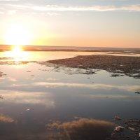 Лед и солнце :: елена ферштут