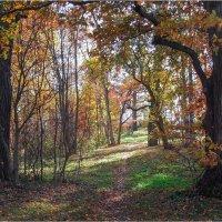 Осенний уголок парка :: Виталий