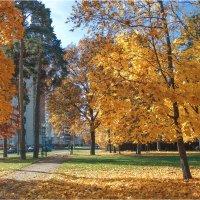 Осенний уголок города :: Виталий
