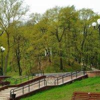 В старом парке весна... :: Юрий Анипов
