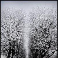 Зимний сюжет 44 :: Цветков Виктор Васильевич