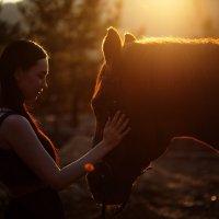 Вашингтон на закате :: Евгения Бурмакина