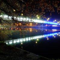 Ночная серенада. :: Алексей Гусаров