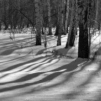 Март :: Arcadii Mayrhofen