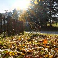 А солнце сонную баюкало скамью и что-то тёплое беззвучно напевало :: Татьяна Кадочникова